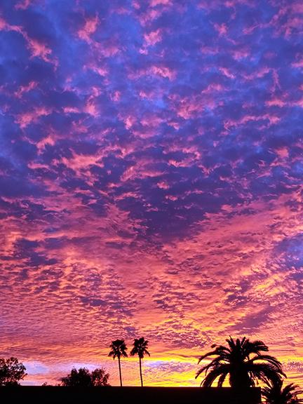 FOS Sunset